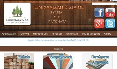 Website 15